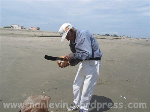 Playas 6.25.2012 002