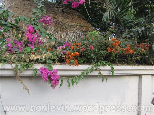 San Clemente 10.7.2013 012