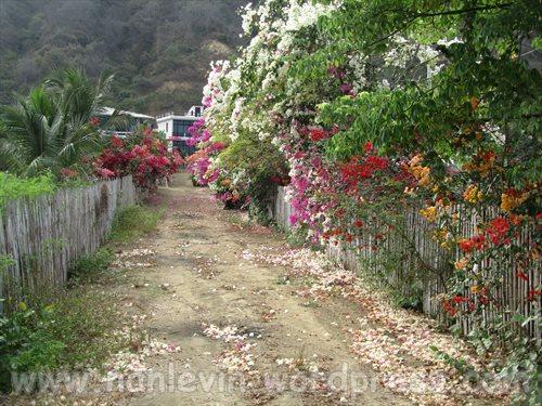 San Clemente 9.11.2013 004