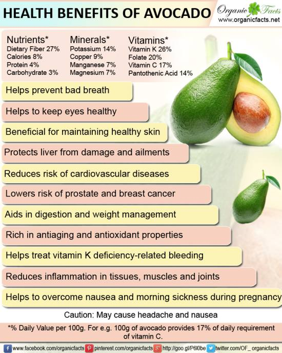 avocadoinfo